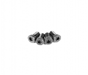 EGW - Torx Action Screws